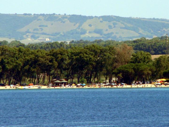 Alghero, Mugoni 1